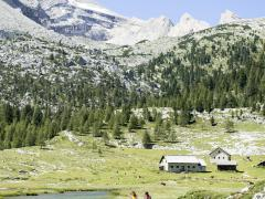 09-olaga-sommer-hiking-c-tvb-kronplatz-photo-alex-filz