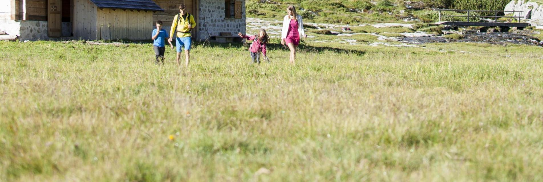 06-olaga-sommer-hiking-c-tvb-kronplatz-photo-alex-filz